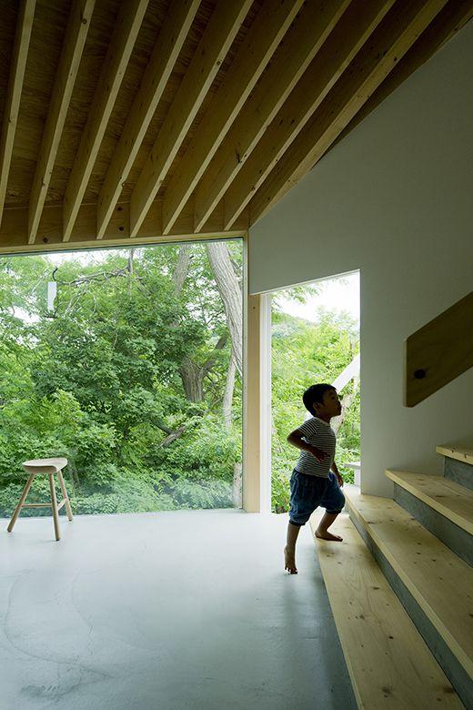 木々と共に暮らす家【照井康穂建築設計事務所】